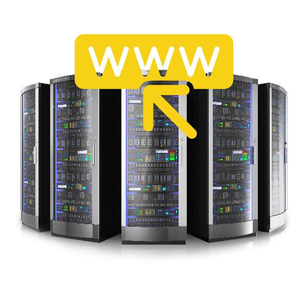 Domain & Web Hosting Sunshine Coast